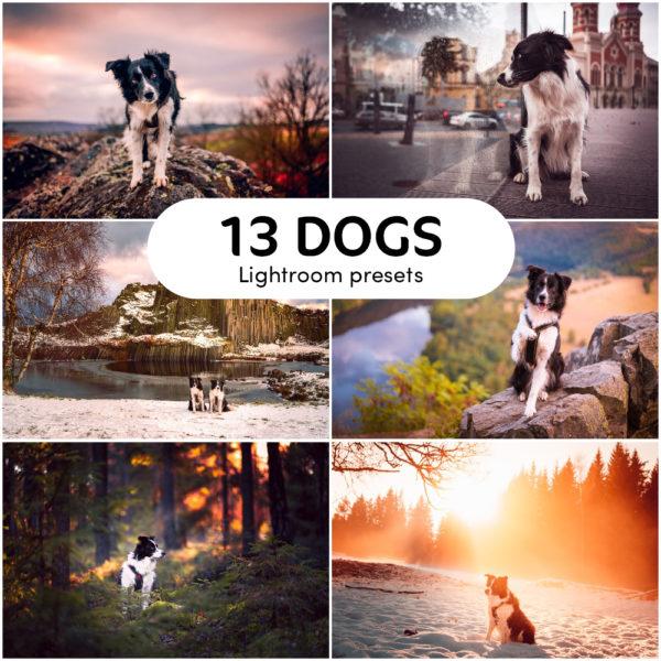 13 DOGS Lightroom presets - Radek Vandra Photography